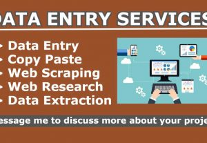 I will do data entry, copy paste, web scraping