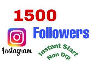 I will add 1500+ Followers on Instagram Profile. Instant start & Non Drop!