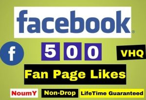 Get 500+ Facebook Page Likes Instant , 100% Real and Non drop