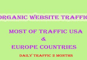 Targeted organic web traffic for 2 months from main search engines and social websites.