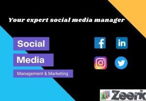 Your expert social media manager for Facebook Instagram marketing