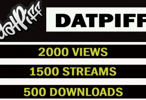 Datpiff Music Promotion 2000 views,1500 streams and 500 downloads