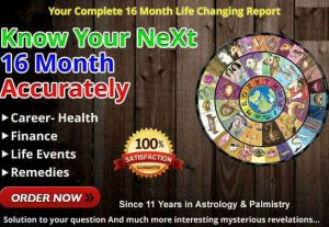 I will do 16 month detailed accurate astrology prediction report
