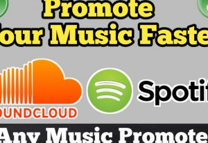 30,000 Real Spotify Plays Music Advertisement promotion