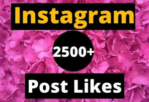 Give Instant 2500+ Instagram Likes on your Instagram post real & organic.