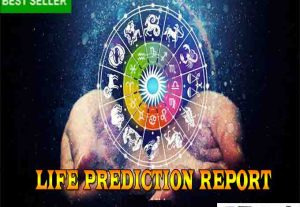 I will do vedic astrology professional report for you