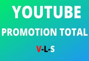 2000+ Youtube Views 30 Likes 30 Subscribers 30 comments Promotion Super Fast & Secure High Retention