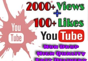 I will provide 2000+ Views and 100+Likes on YouTube!! Fast and HQ!!