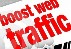 American web guests genuine focused on Organic web traffic from USA, United States