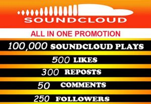 100,000 soundcloud plays with 500 likes, 300 reposts, 50 comments, 250 followers