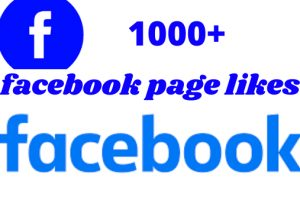 1000+ Facebook page likes 100% organic and real non drop