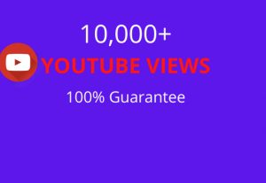 I will provide you 10,000+ YouTube views