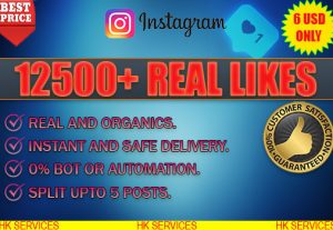 12500+ INSTAGRAM REAL LIKES NO BOT OR AUTOMATION.NON DROP ! 5-10% OVER DELIVERED