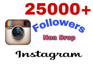 Get 25K followers on Instagram . Non Drop Guaranteed!