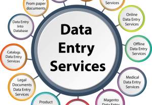 I will do data entry, copy paste, web research and excel data entry
