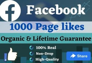 Promote your FACEBOOK Page to increase 5000 Page Likes & 20 Share.