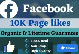 Promote your FACEBOOK Page to increase 10000 Page Likes & 100 Share.