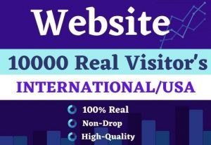 Get 10000 website Visitor's international  real||USA  Non drop for best price