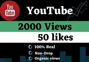Get 2000 Youtube Views and 50 Likes, Organic views Non drop, and a Lifetime guarantee