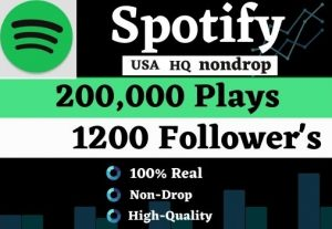 Get 200K USA HQ Non-drop Spotify Music playlist Track Plays And 1200 Followers for best price