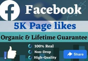 Promote your FACEBOOK Page to increase 5000 Page Likes & 50 Comments.