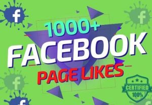 I will provide 1000+ Facebook Page Likes organically Lifetime Guaranteed