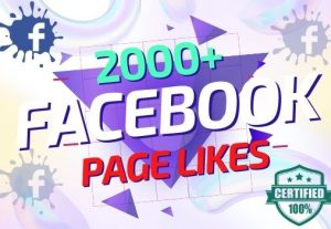 I will provide 2000+ Facebook Page Likes organically Lifetime Guaranteed