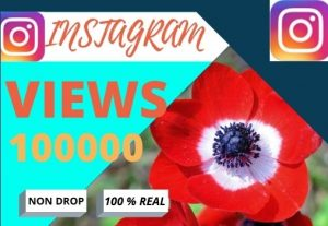 i will do fast your Instagram 100000 views Non drop, Lifetime granted ,100% real and organic