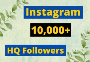 Instagram 10,000+ Followers HQ Nondrop