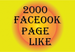 2000 Facebook Page like Non Drop and Lifetime permanent