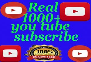 i will provide you 1000+ youtube subscribe