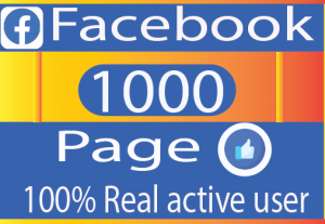 I Need get 1000 facebook page like Real active User Non drop 100% live time Guaranteed