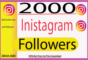 I will provide 2000 Instagram Real  Followers  And Non Drop 100% Live Time (Guaranteed)