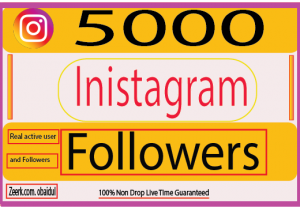 I will Provide 5000 Instagram Followers.Real Followers 100% Non Drop (Guaranteed)