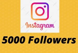 Instagram 5000+ Followers Non-drop