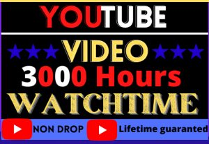 i will do fast your YouTube video 3000 hours Watchtime ,Non drop good quality 100% real and organic