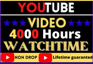 i will do super fast your youtube channel promotion and 4000 hours watchtime,best quality lifetime guaranteed and organic