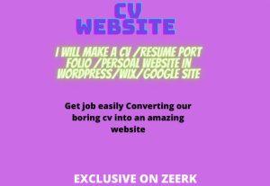 i will create cv port folio website