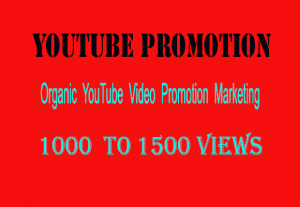 Organic YouTube Video 1000-1500 Views for $ 5