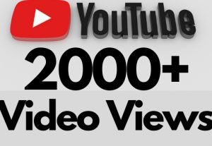 I will add 2000+ REAL AND non drop YouTube video views