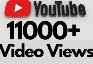 I will add 11000+ REAL AND non drop YouTube video views