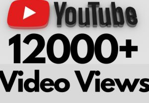 I will add 12000+ REAL AND non drop YouTube video views