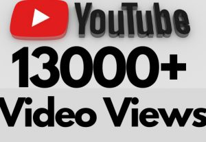 I will add 13000+ REAL AND non drop YouTube video views