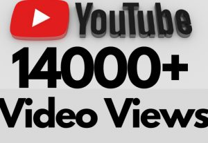 I will add 14000+ REAL AND non drop YouTube video views