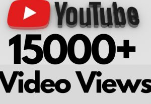 I will add 15000+ REAL AND non drop YouTube video views
