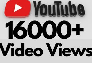 I will add 16000+ REAL AND non drop YouTube video views