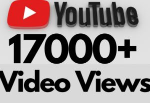 I will add 17000+ REAL AND non drop YouTube video views