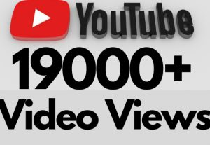 I will add 19000+ REAL AND non drop YouTube video views
