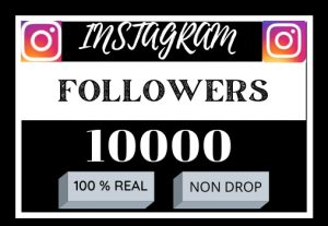 i will do first your Instagram 10000 followers, non drop and organic