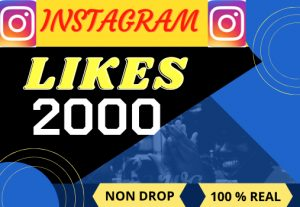 i will do fast your Instagram 2000 likes , Non drop ,Lifetime parmanent ,100% real and organic